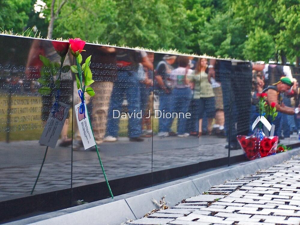 Vietnam Memorial - Washington DC by David J Dionne