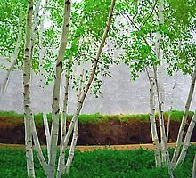 A Grove of Birches 1 by Tom  Reynen