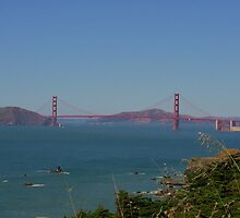 Golden Gate taken by my Daughter by flyfish70