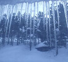 icicle by LeAnna Roberson