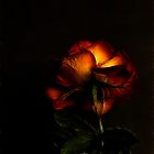 Love In (Rose) - Fractalius by Jan Clarke