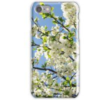 Blooming apple tree iPhone Case/Skin