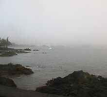 Hilo Bay on a Foggy Day by ronholiday