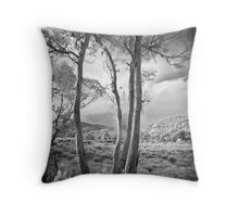 Eucalypt at Cradle Mountain Throw Pillow