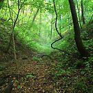 Wood Safari by WickedJuggalo
