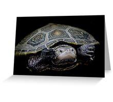 Turtle - Just Keep Swimming Greeting Card