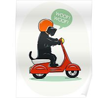 Scottish terrier riding a scooter Poster