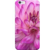 Magenta Dahlia iPhone Case/Skin