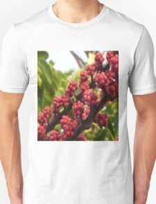 Bee in Red T-Shirt