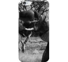 Heavyweight Fight iPhone Case/Skin
