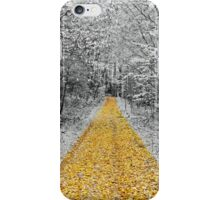The golden path  iPhone Case/Skin