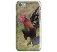 Proud Cockerel iPhone Case/Skin