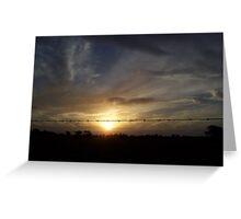 Sunset through Barb Greeting Card