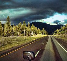 """""""Stormy Road Ahead"""" by Melinda Stewart Page"""