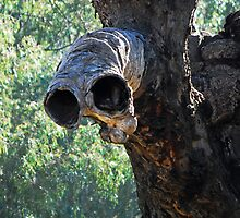 ET Tree by bazcelt