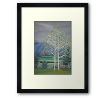First of May, Crawford, Colorado Framed Print