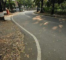 suburban road by bayu harsa