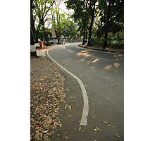 suburban road Photographic Print