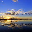 """"""" Stockyard Reserve Sunset """" by helmutk"""