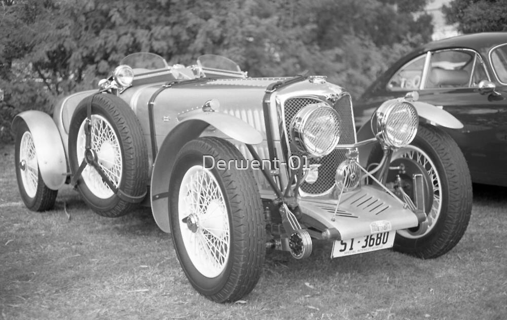 Riley Racing Car by Derwent-01