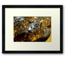 Above the Boiling Point  Framed Print