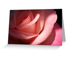 Pink Rose. Greeting Card