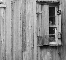 Cajun Window B&W by Christopher Heil