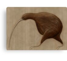 Its a Kiwi Canvas Print
