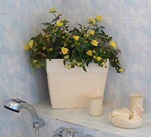 A Shiny bathroom by daffodil