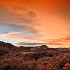 Red Glow Evening by Warren. A. Williams
