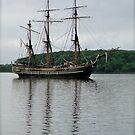 Tall Ship by Lynn Armstrong