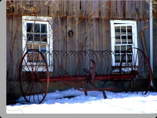The Barn by vigor
