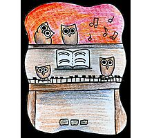 Piano Owls Photographic Print
