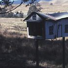 House-shaped Letterbox, Lindesay Highway, Queensland by muz2142