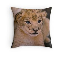Soft & Cuddly Throw Pillow