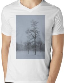 Whispering Snowflakes Mens V-Neck T-Shirt