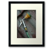 garden sprayer Framed Print
