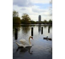 """""""Reflection"""" - Hyde Park Photographic Print"""