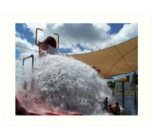The Bucket ~ Leanyer Recreation Park ~ Northern Territory Art Print