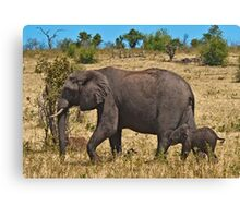 Follow mama! Canvas Print