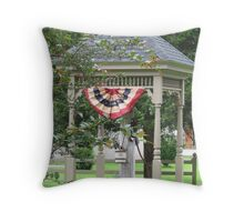 """ A Cold Drink Anyone? "" Throw Pillow"