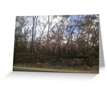 Woodside ~ Black Saturday Greeting Card