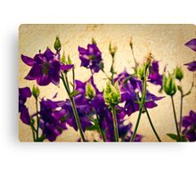 Purple flowers with texture Canvas Print