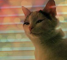 Glitterkitty by OhBlee