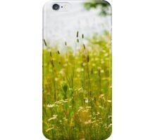A Field of Daisies iPhone Case/Skin