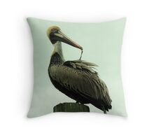 Pelican Feather Throw Pillow