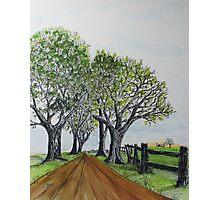Country Lane 150711 Photographic Print