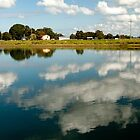 Macleay River Afternoon by Denise McDermott