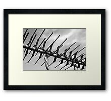 tv antenna Framed Print