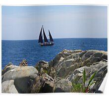 Black Sails Again Poster